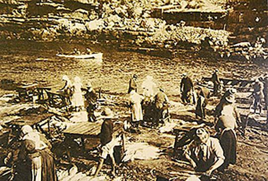 hermanus harbour
