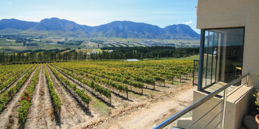 hermanus winelands